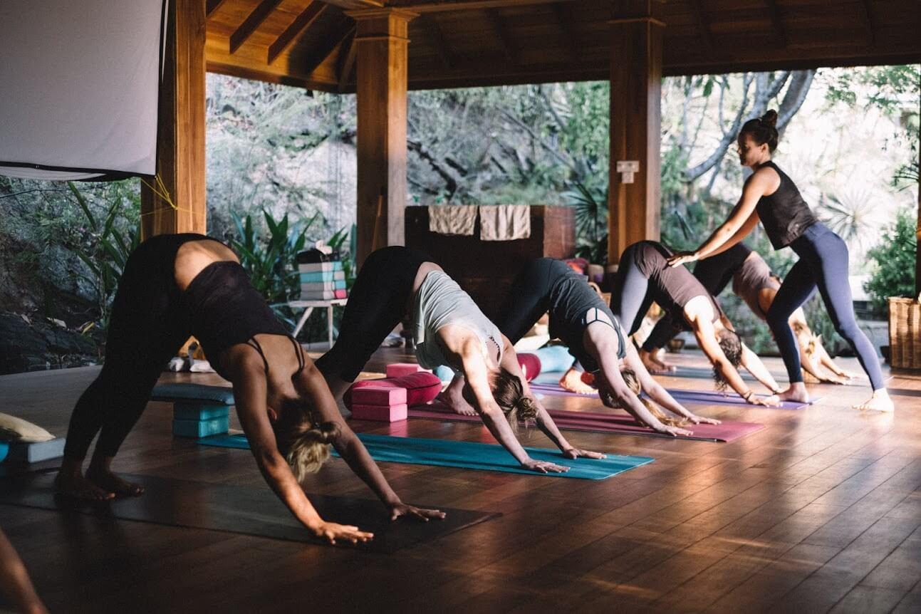 wild self yoga